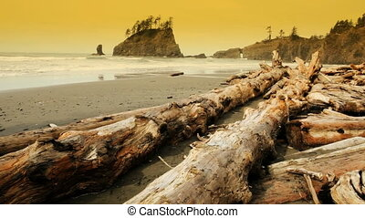 Second Beach - Rock and driftwood covered Second Beach by La...