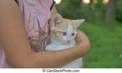 girl brunette holding kitten in her cat arms love teen...
