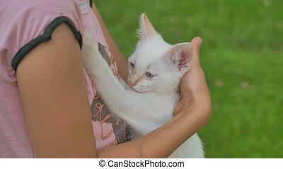 brunette girl holding kitten in her teen cat arms love...