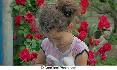 brunette girl teen holding kitten in her cat arms love...
