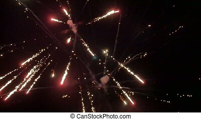 beautiful fireworks night shot slow motion video - insect...