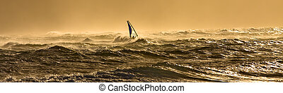 Windsurfing in Hawaii - A windsurfer is riding along the...