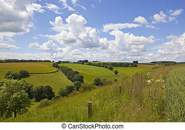 patchwork fields in the yorkshire wolds - picturesque...