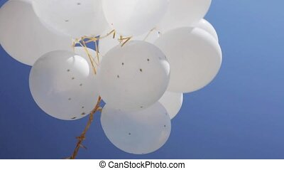 inflated white helium balloons in blue sky 5 - holidays,...