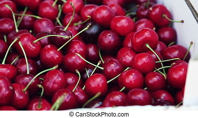Cherries. Close-up. Directions camera. - Red, overripe...