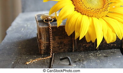 sunflower - flower background - sunflower on old wooden...