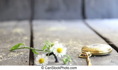 spring flowers and pocket watch - flower background -...