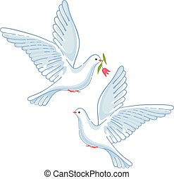 Soaring dove with flower, vector illustration isolated on...