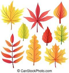 Autumn retro leaves set