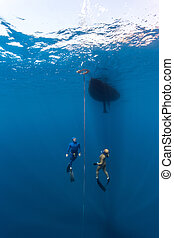 Two scuba divers swim under the water - The underwater...