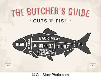 Cut of meat set. Poster Butcher diagram and scheme - Fish....