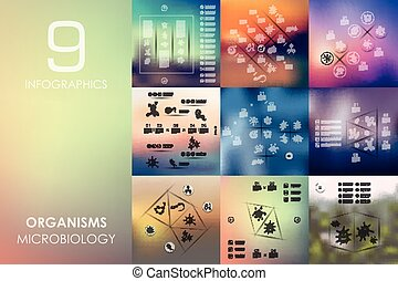 organisms infographic with unfocused background - organisms...