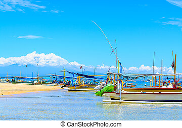 A line of Indonesian fishing boats lined up on the shoreline...
