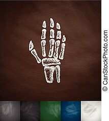 X-ray hand icon Hand drawn vector illustration Chalkboard...