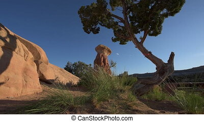 Devils Garden hoodoos after sunset, Grand Staircase...