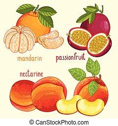 Fresh fruit mix isolated, vector illustration