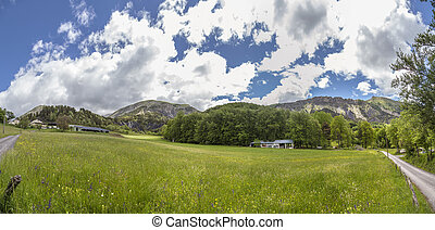meadow near le Vernet at col Mariaud - green meadow near le...