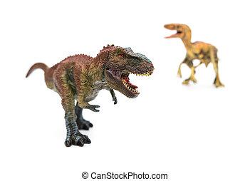 tyrannosaurus, y, Velociraptor, en, Un, blanco, Plano de...