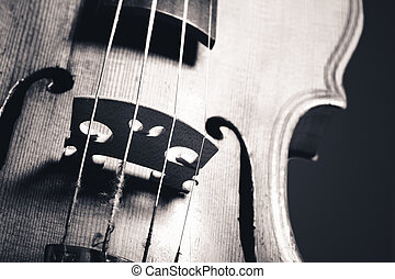monochrome image of hand crafted violin closeup