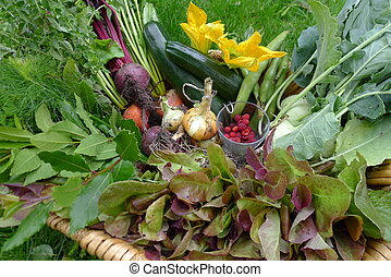 fresh vegetables from the garden ia a basket - fresh...