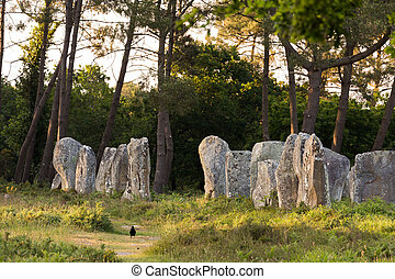 Carnac stones in Brittany - Carnac stones alignment in...