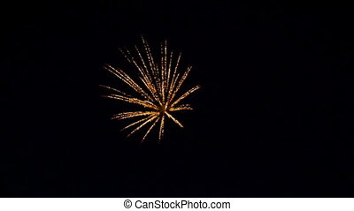 Fireworks in the park birthday party HD