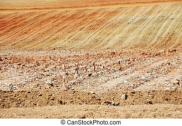 red plowed field texture