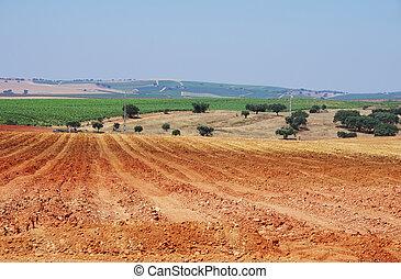 Plowed field in the alentejo region, Portugal