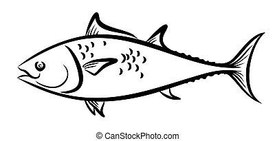 Sketch of sea fish. - Sketch of big sea fish.