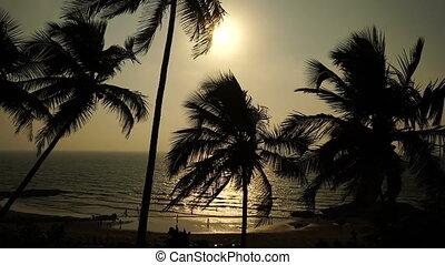 Sea. Palm trees. People