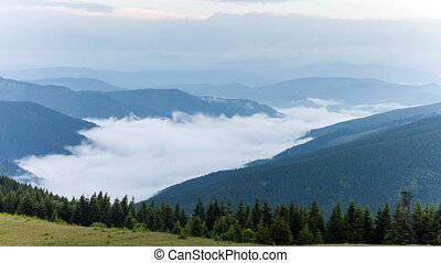 scenic view of mountain forests covering by fog