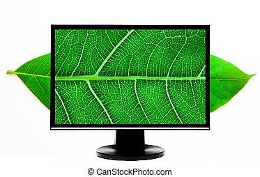 hd computer monitor