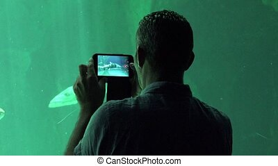 Man Filming Sea Life At Aquarium