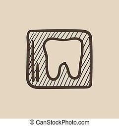 X-ray of tooth sketch icon - X-ray of toot vector sketch...