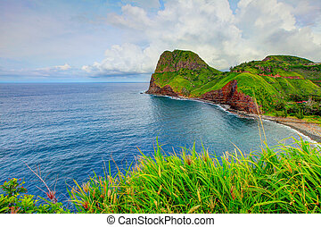 Ocean view. Grass at the foreground. Road to Hana, Maui, Hawaii