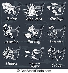 Collection of Ayurvedic Herbs Labels for Essential Oils and...