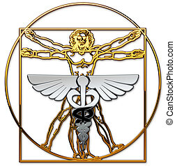Vitruvian Man - The Vitruvian Man and the caduceus