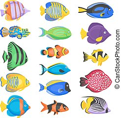 Exotic Fish Set - Exotic tropical fish set in different...