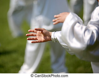 hand of martial arts master Tai Chi with followers - hand of...
