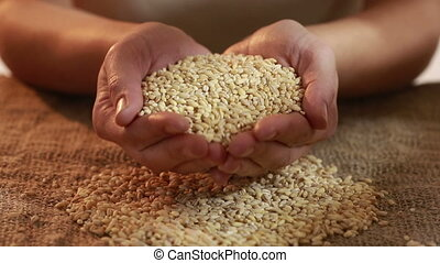 pearl barley spilling on burlap grits for porridge