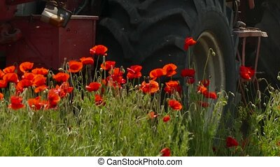 Agricultural Machinery Working On Poppy Field