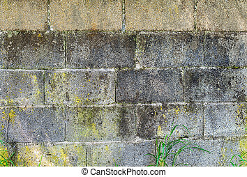old wall with concrete blocks