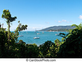 Boats at Whitsunday - Whitsundays in Australia showing...