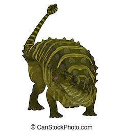 Talarurus Dinosaur on White