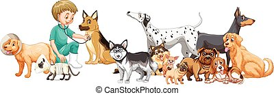Vet examining many dogs illustration
