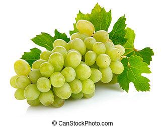 fresco, uva, frutas, verde, folhas