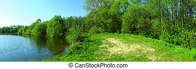 Panoramic image of the forest on the lake