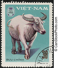 postage stamp - VIETNAM - CIRCA 1979: A stamp printed in...