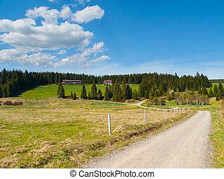 Rural landscape near Horska Kvilda in Sumava - Green hilly...