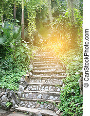Natural stone stairs landscaping in garden with burst light